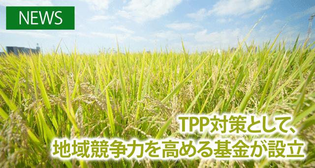 テンプレート_農業経営