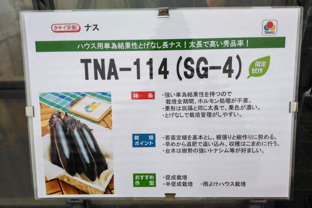 IMG_20151117_142325