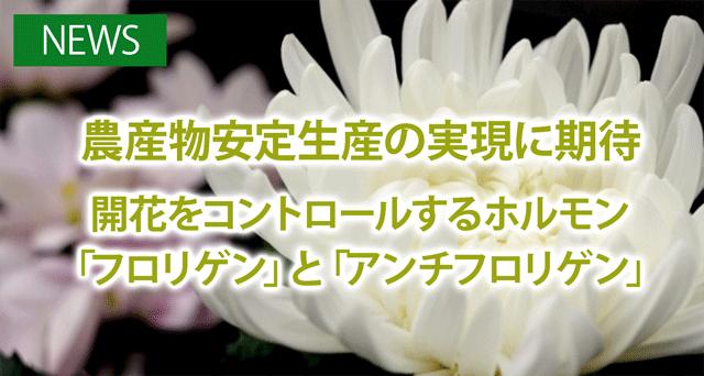 top_151229