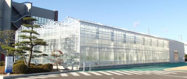 井関植物工場