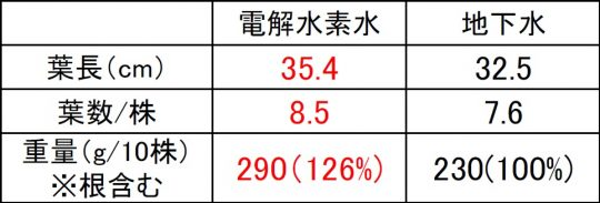 %e6%96%b0%e3%81%97%e3%81%84%e3%83%93%e3%83%83%e3%83%88%e3%83%9e%e3%83%83%e3%83%97-%e3%82%a4%e3%83%a1%e3%83%bc%e3%82%b8