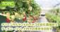 オリエンタルランドがイチゴの自社農園を北海道に設立 ディズニーリゾート内での提供を目指す