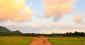 アメリカ・オランダ・スイス….海外での長期農業研修という選択肢【国際農業者交流協会 皆戸顕彦氏寄稿】