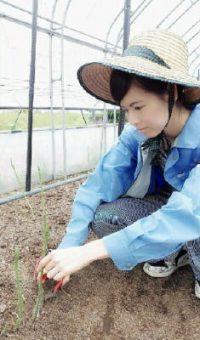 躍動!農業女子(3) 奥園淑子さん(27)神埼市