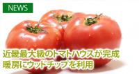 近畿最大級のトマトハウスが完成 暖房にウッドチップを利用
