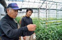 脱サラ農家、九州で増える理由 新規参入最多の県は…