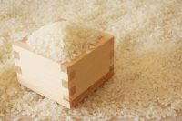 なぜトマトより米は安く売られているのか 農業から見える経済のフシギ