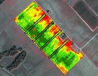 宇宙から野菜の生産予測–農業先進国のオランダが新たな挑戦