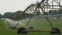 農業の大規模化・企業化は農村に何をもたらすのか? 海外の事例から農業改革を考える
