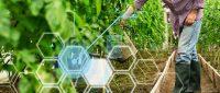 「水やり10年」から「AI農業」へ、農業を主要産業の一つに押し上げたい
