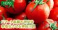 スマート農業の研究を本格化させる神奈川県