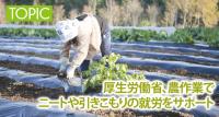 農作業でニートや引きこもりの就労をサポート