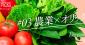 オリックスが成長分野の一つと捉える「農事業」最前線